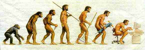 evolution photo