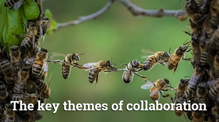 The Key Themes of Collaboration